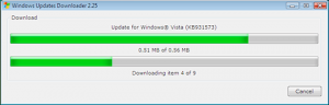 Manual update download